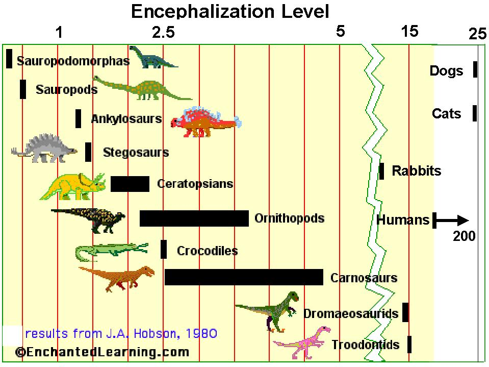 chart of encephalization level for dinosaurs, cats, dogs, rabbits